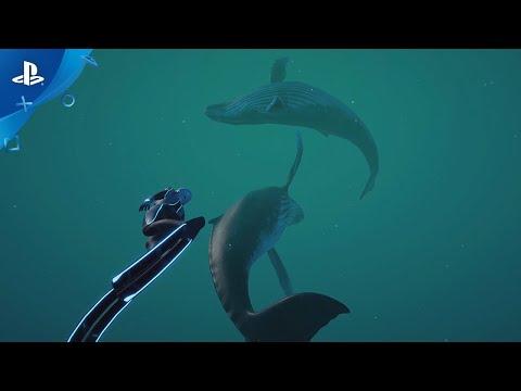 Beyond Blue - Launch Trailer | PS4