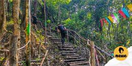 Brunei's Hiking Trails: Easy To Hard (Mar 2021)